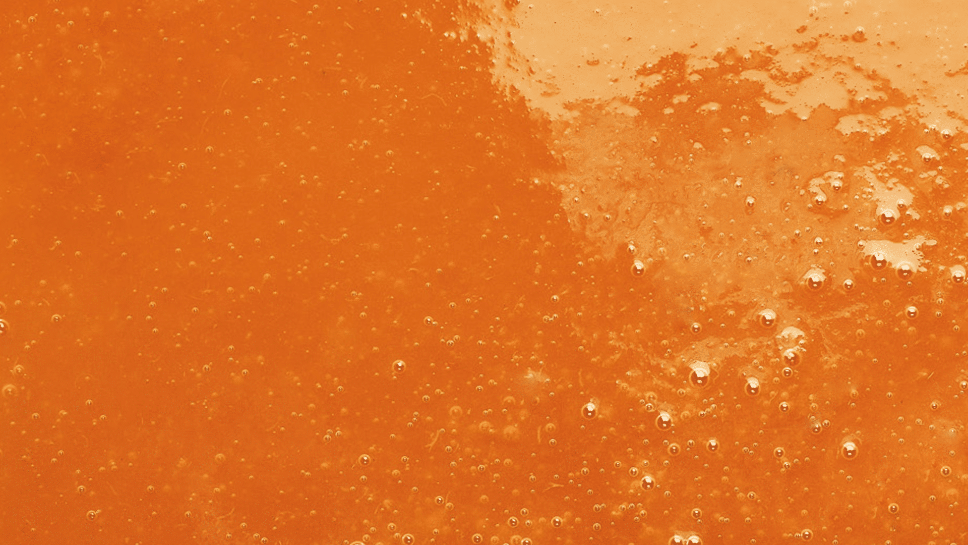 Adamance - Purée d'abricots flavorcot et lido