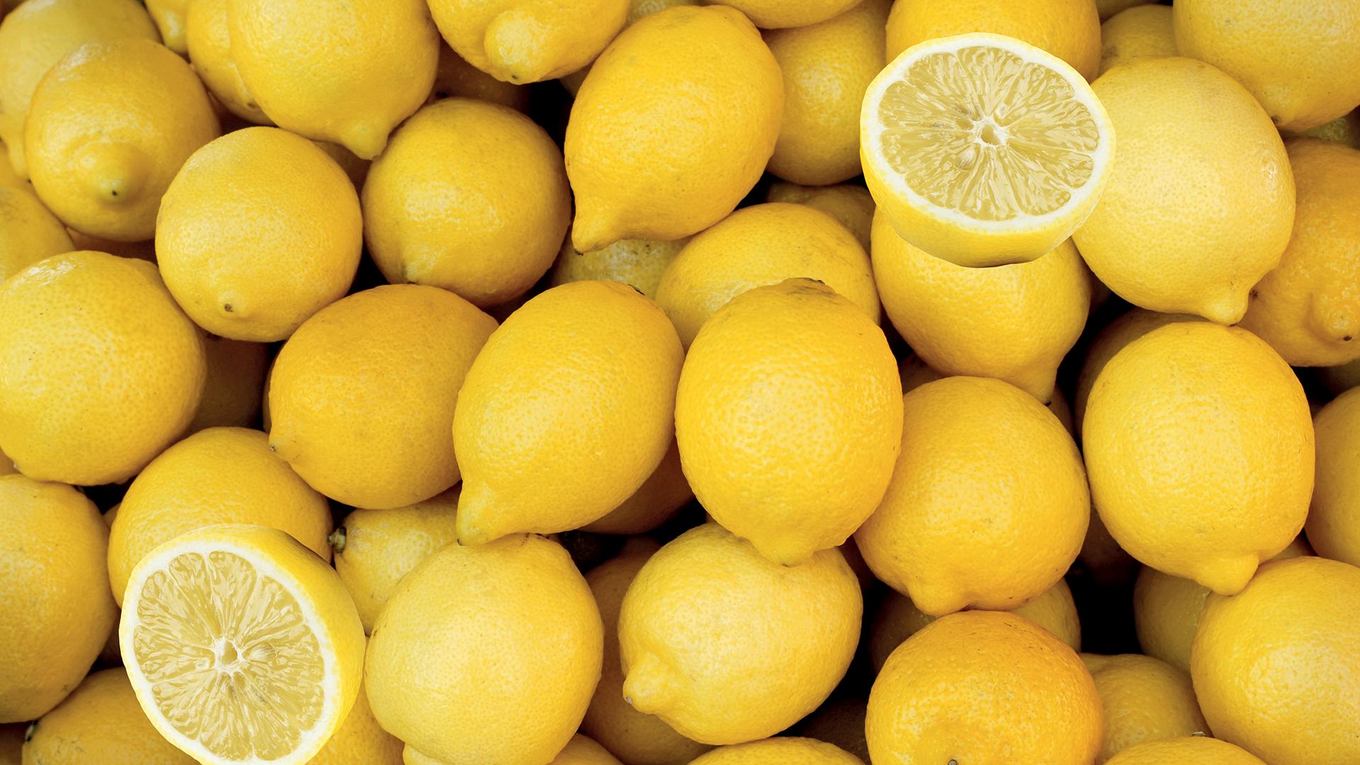citron Femminello adamance
