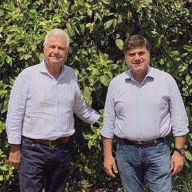 Giuseppe et Dario Campisi producteurs de citron